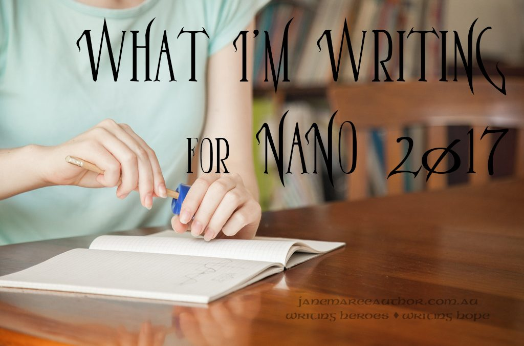 What I'm Writing for NaNoWriMo 2017